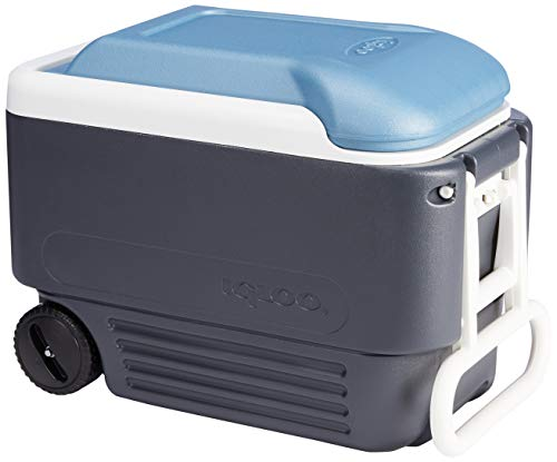 Igloo Quart MaxCold Cooler