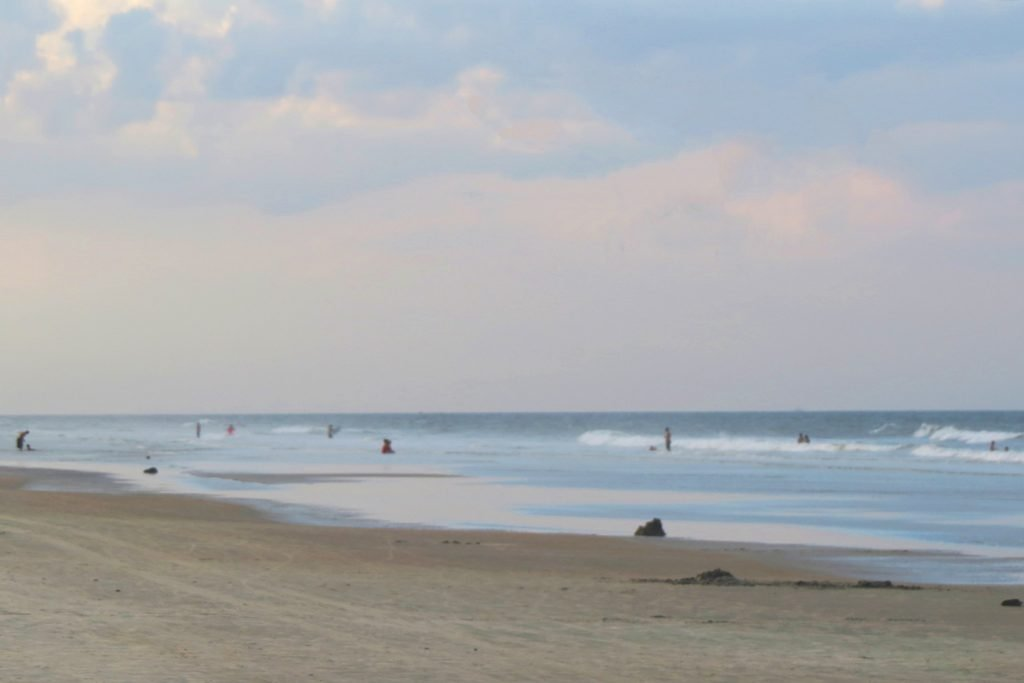 Smyrna beach one of the best beaches to shell on East Coast Florida