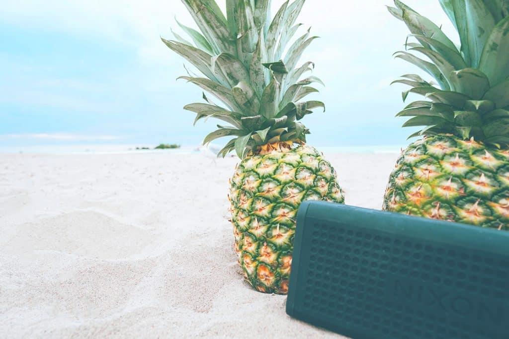 Waterproof speaker for the beach