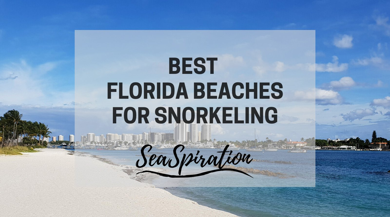 Best Florida beaches for snorkeling