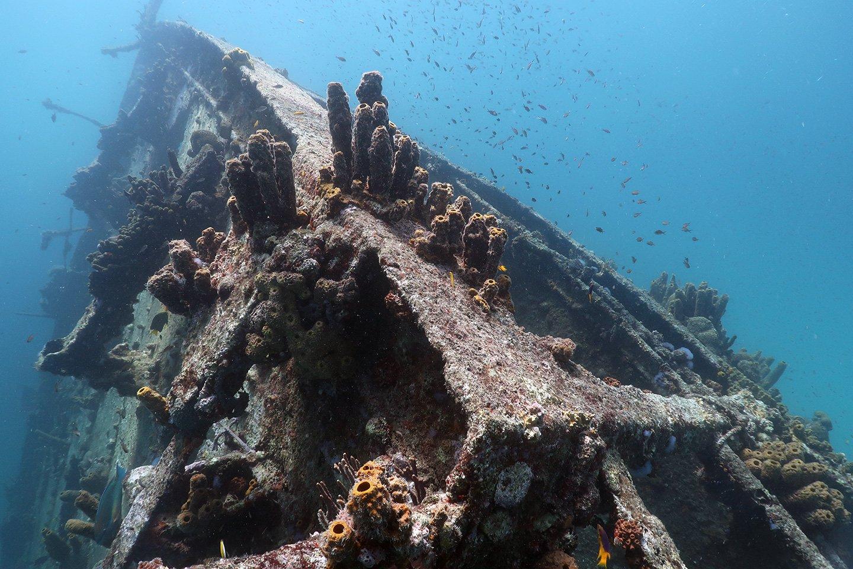 The Antilla wreck