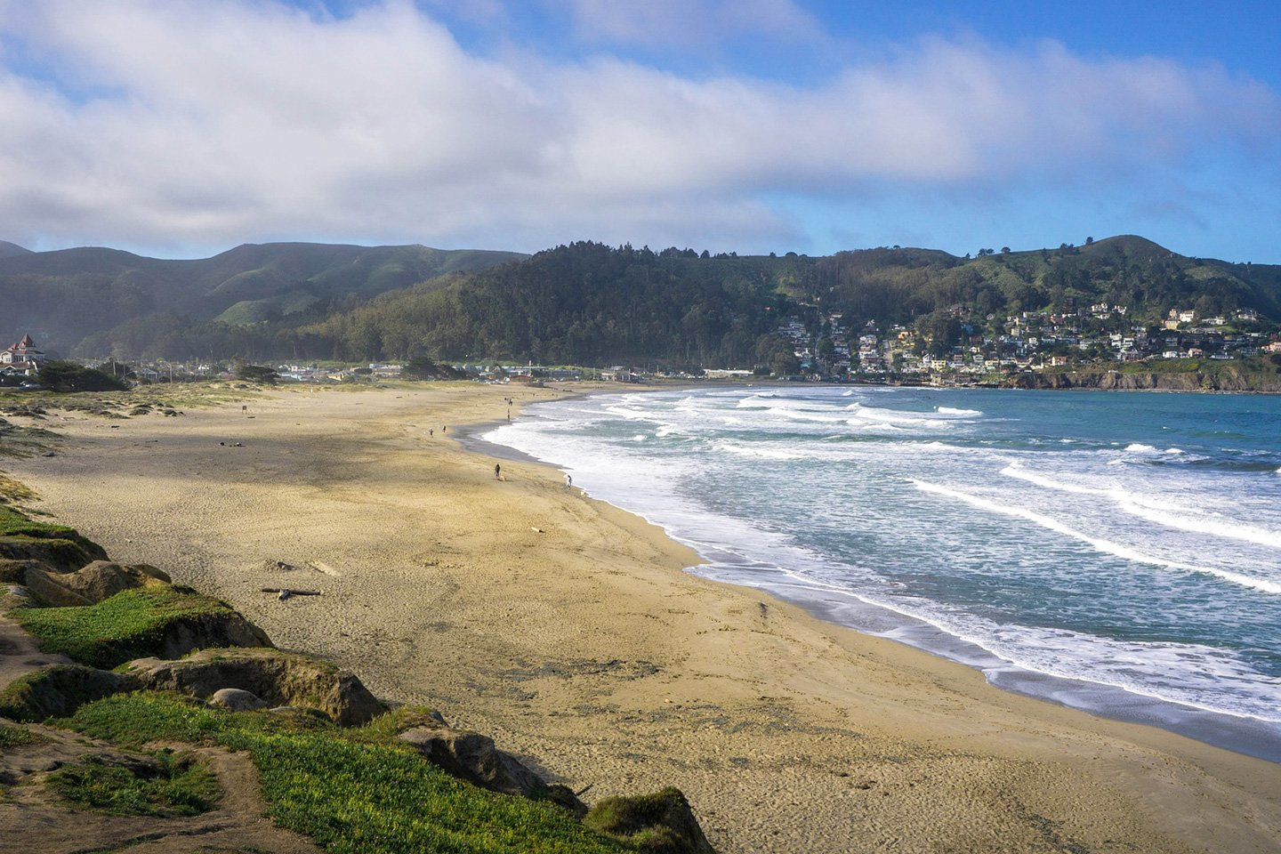 Dog friendly Pacifica State Beach