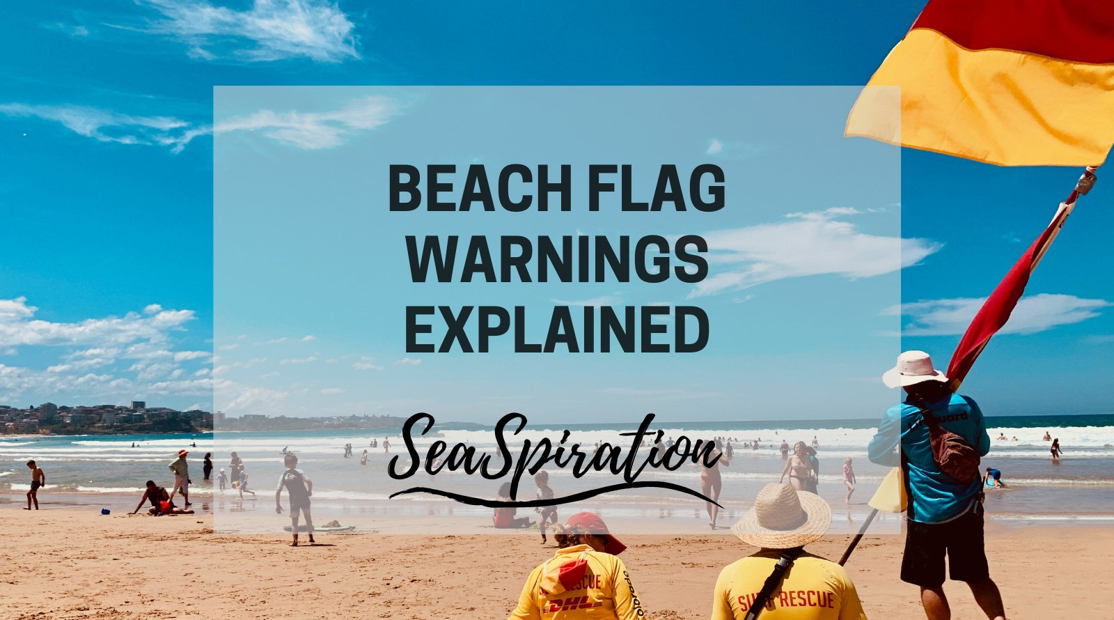 Beach flag meanings