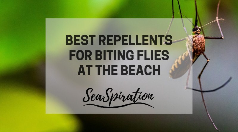 Best repellent for biting flies at the beach