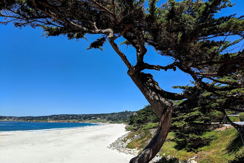 Carmel beach - Carmel by the Sea
